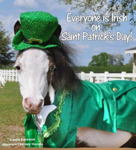 Cloudburst wishes you a Happy St. Paddy's Day!