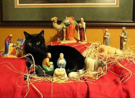 """I Just Wanted to Get A Closer Look at the Baby Jesus."""